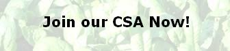 Join our CSA Now!