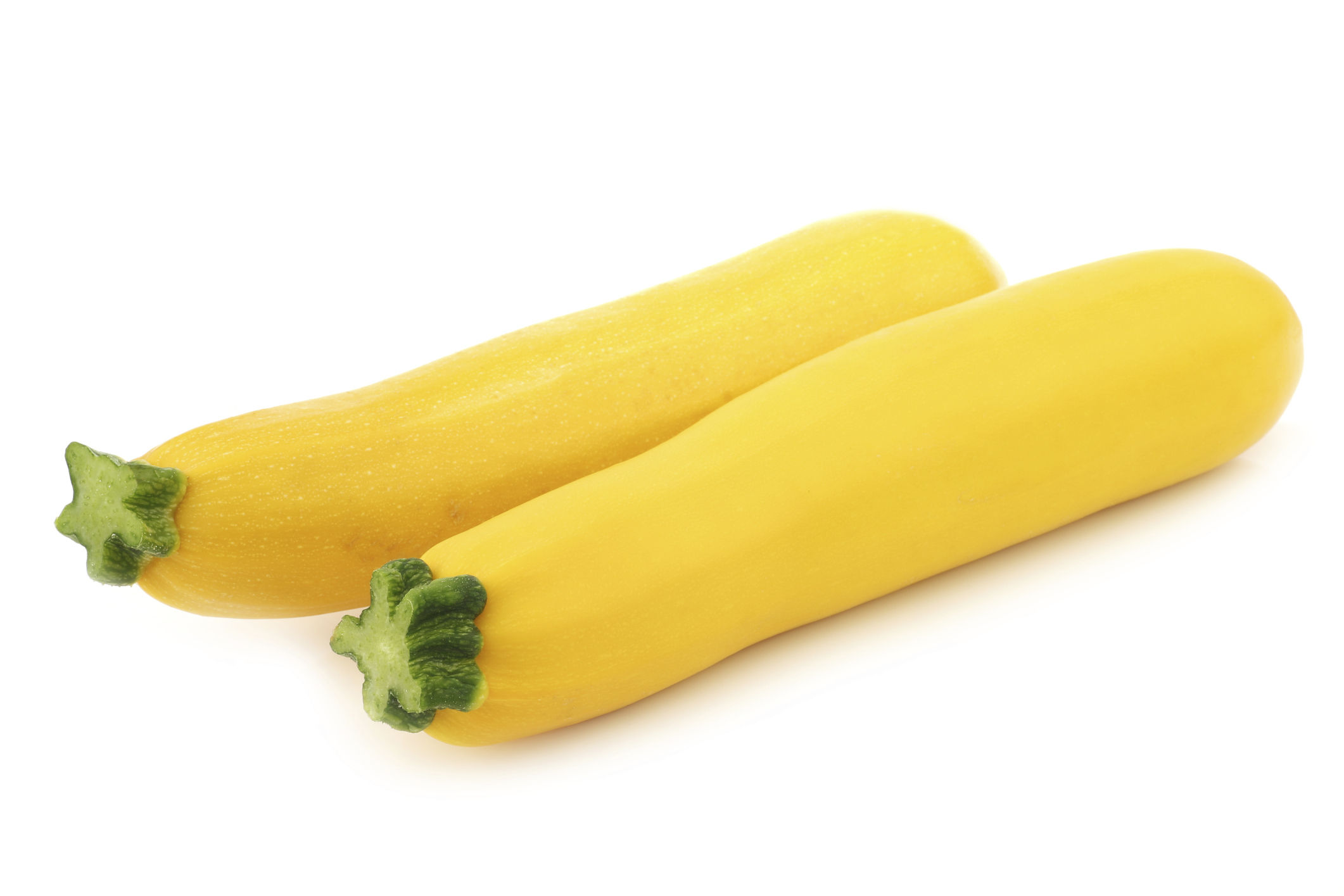 yellow zucchini montalbano farms. Black Bedroom Furniture Sets. Home Design Ideas